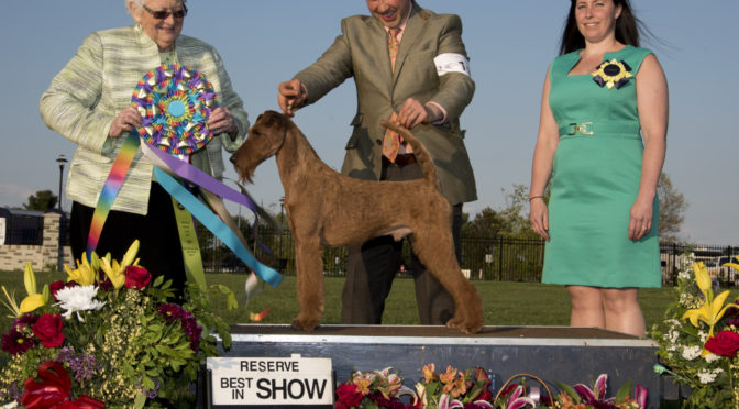 2016 Sunday Reserve Best In Show